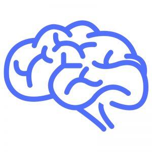 Hjernen smerter i underlivet